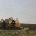 """Изотов М.Н. """"Осенний свет."""" 2010. Холст,масло 108х163 ИРРИ, Москва"""