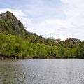 Langkawi, Malaysia, Mangrove-Tour
