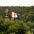 Regierungsgebäude Liestal und nicht südamerikansicher Regenwald...