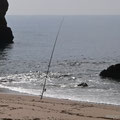 - lonely fisher -