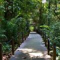 Singapore, Botanic Gardens