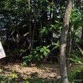 Singapore, Sungei Buloh Wetland Reserve