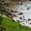 Langkawi, Malaysia, Hotel Beach with Lizard