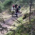 Die letzten 500 Höhenmetern dann im Marsch zum Ausgangspunkt (Drei Brunnen) zurück