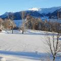 am Burgeiser Bergsee