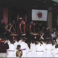 Sandokan-Bonsai-Gala