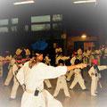 Snow-Karate