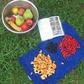 foto: gesammelte pilze, beeren und obst aus dem laden
