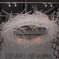 鳥の巣みたいなディスプレー2