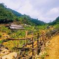 Moc Chau ohne Nebel ist auch möglich – auf Wanderung durch ein angrenzendes Tal