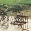 Traditionelles Wasserrad aus Bambus – Wasser wird zur Bewässerung der Reisfelder aus dem Fluss geschöpft