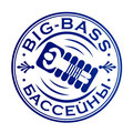 """Название и логотип для компании """"Big-Bass"""", продающей бассейны и оборудование для них, Самара, 2012 г."""
