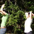 ...beim Üben im Wald...