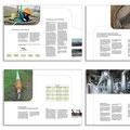 Layout nach CI und Umsetzung  ||  Seitenauszüge aus 16-Seiter-Imagebroschüre der Firma Ferrum mit Bildretusche