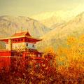 """ Shimla India"""