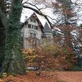 Villa Frohberg Winterthur