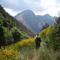 Wanderung nach Ano Mavriki durch blühende Sträucher und Blumen