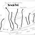 Bruchtal