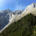 der Abstieg quert die grasigen Schrofen nach rechts und mündet dann auf den Waldrücken