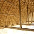 Plafond de la nef (berceau brisé lambrissé))
