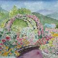07.05.22 6号 花の文化園