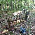 R1.10.1 中札内村の一本山展望タワーへと続く階段において、木柵補修のボランティアを行いました