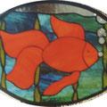 Goldfisch, vorrätig