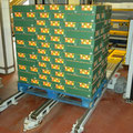 tray palletiser