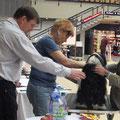 Tripitaka Oriental Lilly CACIB Ludwigshafen 2011 Open Class V1 VDH Res. CAC Res. CACIB
