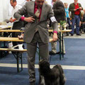 CACIB Gießen 2012_Ceasar's Ce-Luuh-Naah made of Dog's Wisdom Offene Klasse [Open Class] V1 CAC Club & VDH & res. CACIB
