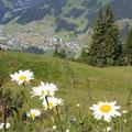 Natur genießen: Wanderungen bieten Erholung pur