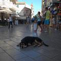 street scene in Corfu City