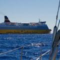 Viel Fährverkehr zwischen Korsika und Elba