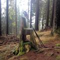 Ein Stuhl im Wald.