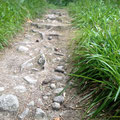 Schritt um Schritt über Stock und Stein, es geht bergauf, versunken im Hier und Jetzt