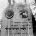 1983-Wien-Judenfriedhof