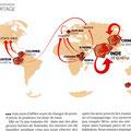 GEO / Roses around the world map