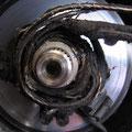 Fühlt sich im Bereich der Kurbelwelle pudelwohl: Antriebsriemen eines Rollers a.D.