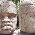 cabeza colosal de San Lorenzo (vista de frente y del perfil), hoy en el museo de Xalapa