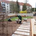 Rollrasen verlegen für WEG`s und Hausverwaltungen, Bauträger nur durch GreenFairway e.K. - Nutzen Sie unser Know How