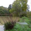 L'étang débordant