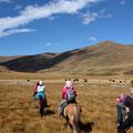 Sechs Stunden zu Pferd, in dieser Traumlandschaft auszuhalten