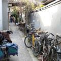 Das Fahrrad immer noch wichtigstes Fortbewegungsmittel im Hutong