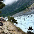 Unser Rastplatz unter einer alten Bergkiefer beim Chalet des Pyramides (Chamonix Mont Blanc)