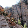 Wanderung Observation Point, Zion NP