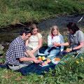 Picknick in Willingen