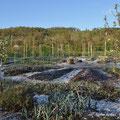 Jardin mandala de la ferme du Bec hellouin - Photo Anne Lavorel