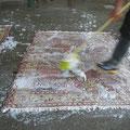 Tappeti trieste-viene spazzolato assieme a particolari shampi e con apposite spazzole diverse a seconda del tappeto in questione in maniera da non danneggiarlo