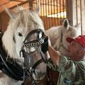 馬とエリオさん