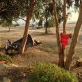 Camping à Solenzara